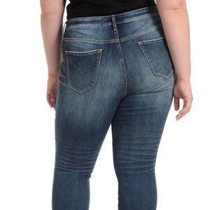 Vigoss Jeans - Vigoss for Torrid Thompson Tomboy  Skinny Jeans